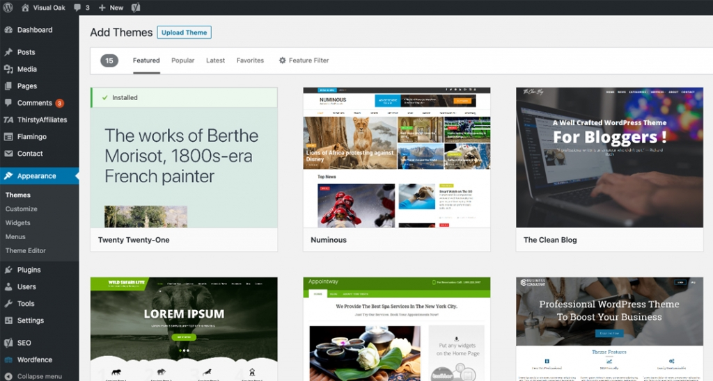 Install a new blog theme in WordPress